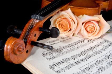 Musica Matrimonio violino rose